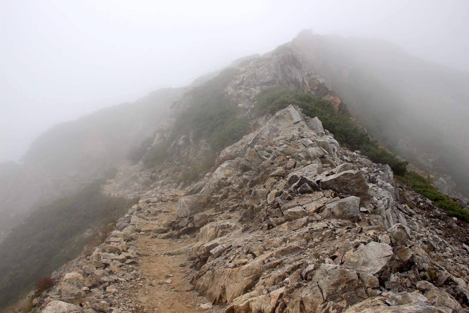 八方池から唐松岳にかけての稜線より