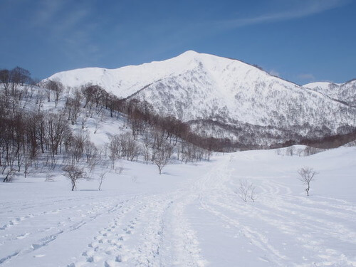 ダイレクト尾根から野伏ヶ岳