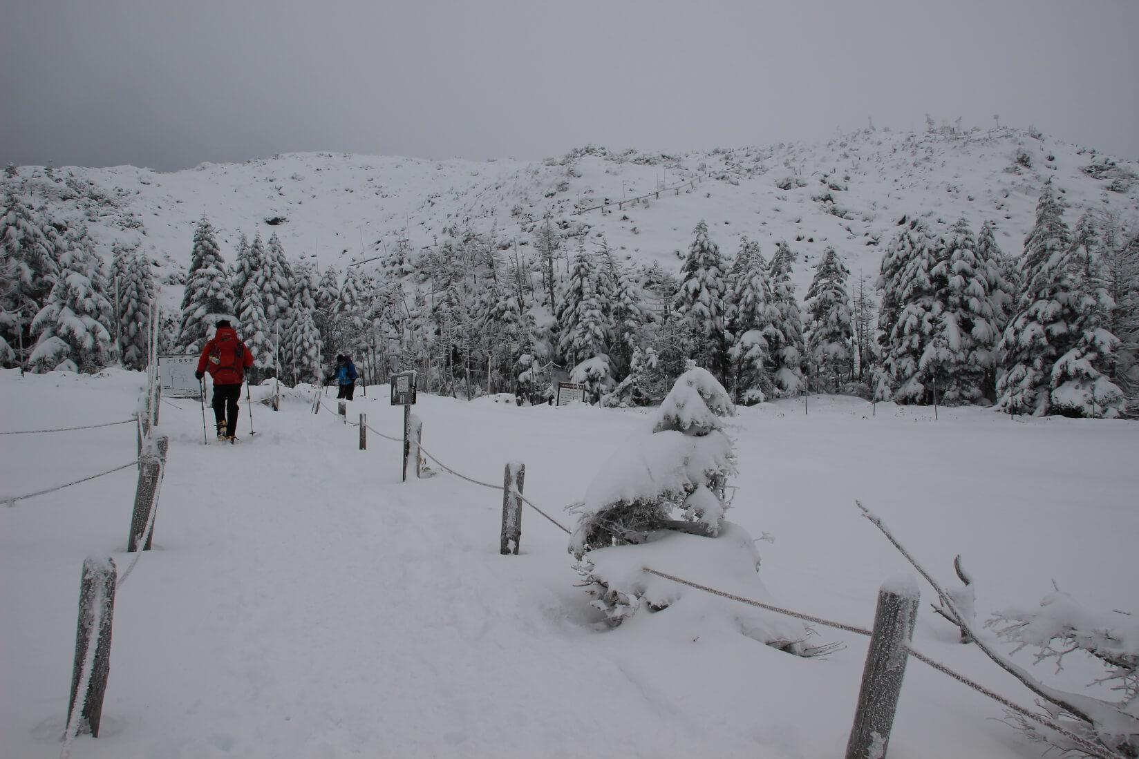 北八ヶ岳ロープウェイ山頂駅〜北横岳ヒュッテ区間