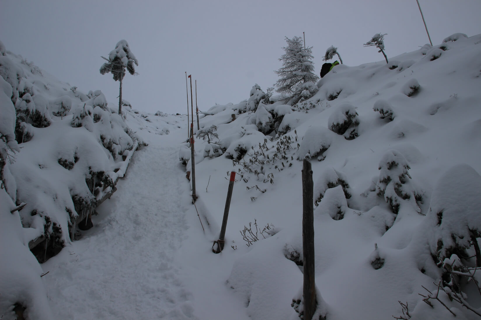 北横岳へのルート