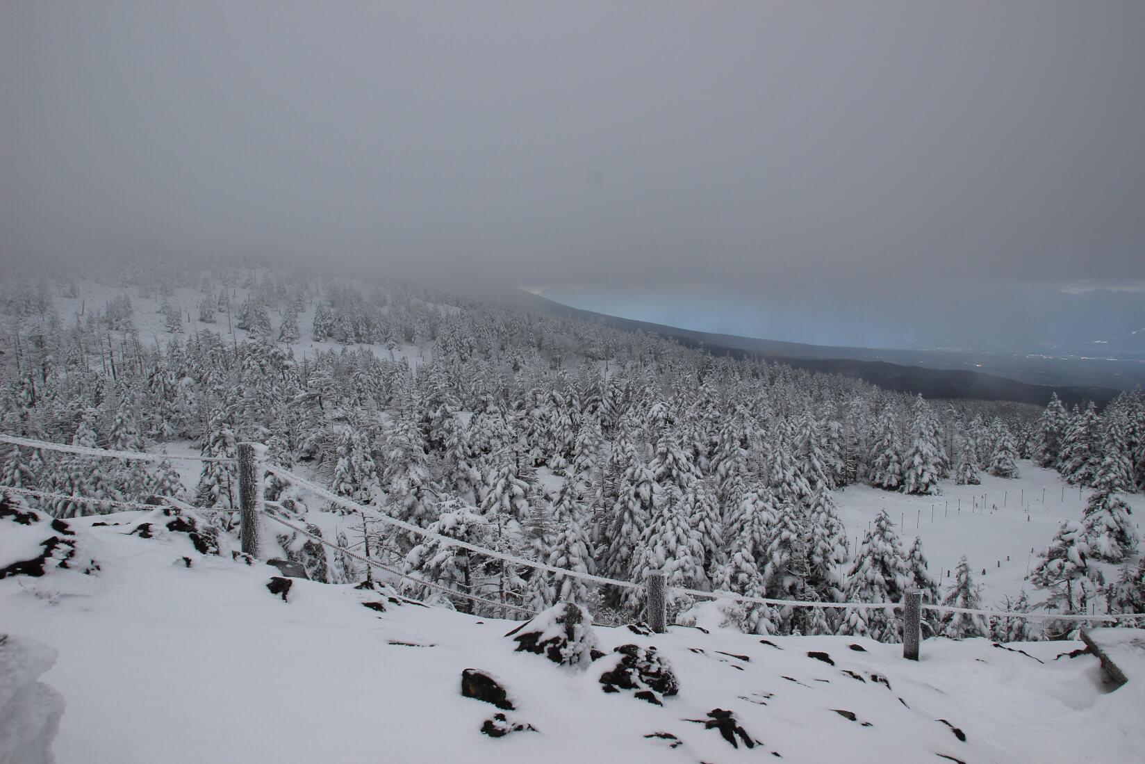 北横岳へのルートにて
